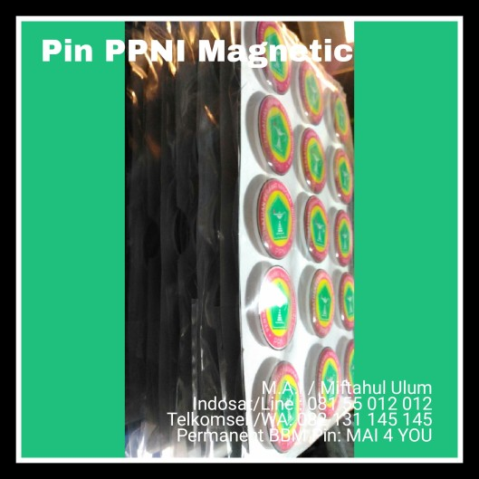 Pin PPNI Magnetic
